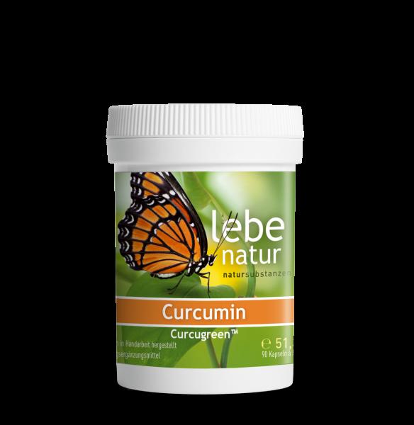 lebe natur® Curcumin 90er