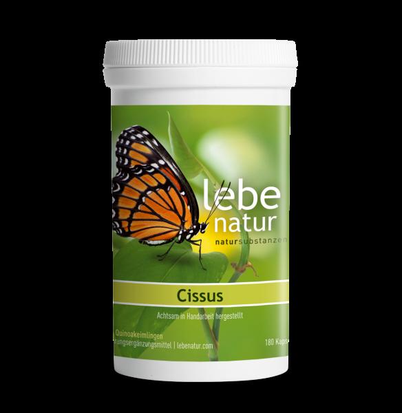 lebe natur® Cissus 180er Dose