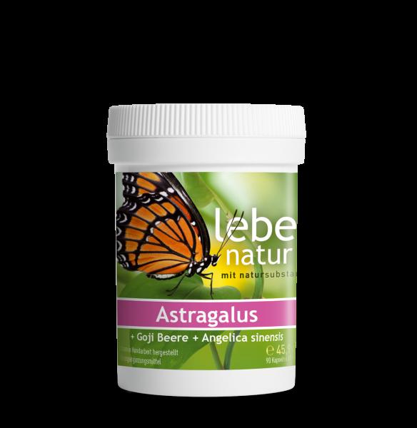 lebe natur® Astragalus + Goji Beere + Angelica sinensis 90er Dose
